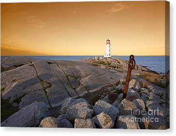 Another Day In The Books Canvas Print