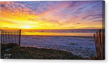 Sunrise With The Birds Canvas Print by Phill Doherty