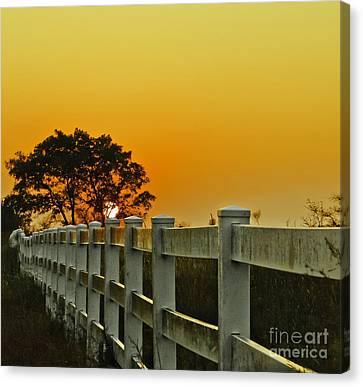 Another Tequila Sunrise Canvas Print by Robert Frederick