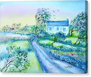 Another Windy Day On Cleare Island Ireland   Canvas Print by Trudi Doyle