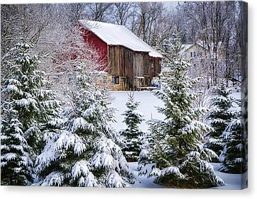 Another Wintry Barn Canvas Print by Joan Carroll
