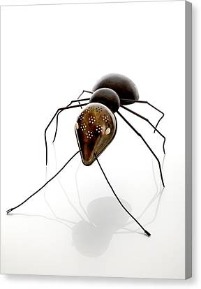 Ant Canvas Print - Ant by Lawrie Simonson