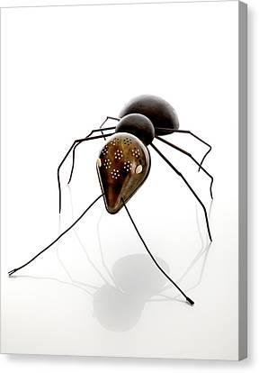 Ant Canvas Print by Lawrie Simonson