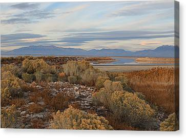 Canvas Print featuring the photograph Antelope Island - Scenic View by Ely Arsha