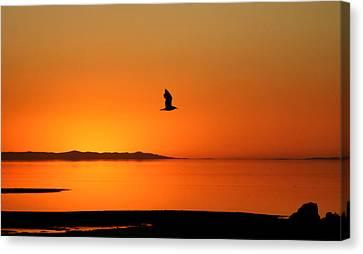 Antelope Island Sunset - 1 Canvas Print by Ely Arsha
