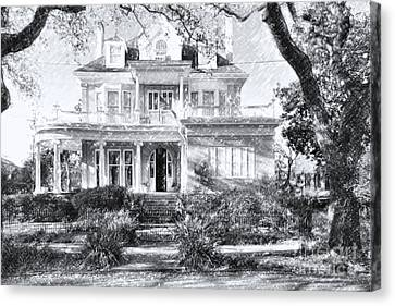 Anthemion At 4631 St Charles Ave. New Orleans Sketch Canvas Print