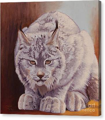 Anticipation Before The Pounce Canvas Print