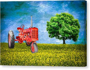 Antique Farmall Tractor Canvas Print by Fred Larson