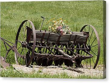 Antique Horse Drawn Seeder Canvas Print by Daniel Hebard