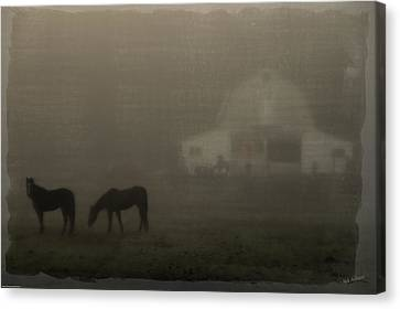 Antique Scene Of Horses In A Fog Canvas Print by Mick Anderson