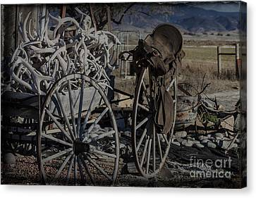 Antlers And My Saddle Canvas Print by Janice Rae Pariza