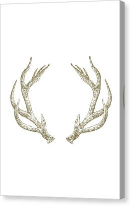 Antlers Canvas Print by Randoms Print