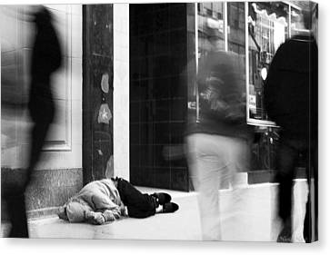Canvas Print featuring the photograph Apathy by Nicola Nobile