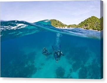 Apo Island Marine Park Negros Oriental Canvas Print by Stuart Westmorland