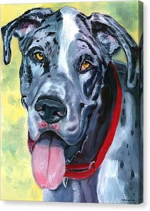 Apollo Of Dogs - Great Dane Canvas Print