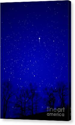 Appalachian Mountain Starry Night Canvas Print by Thomas R Fletcher