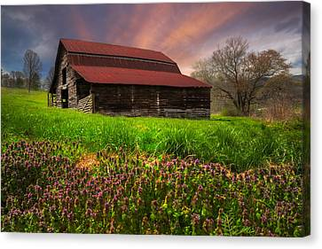 Appalachian Spring Canvas Print by Debra and Dave Vanderlaan