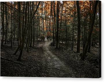 Canvas Print featuring the photograph Appalachian Trail by Anthony Fields