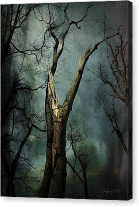 Appeal To The Sky Canvas Print by Cynthia Lassiter