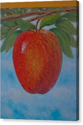 Apple 1 In A Series Of 3 Canvas Print