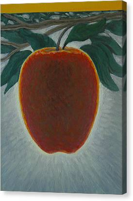 Apple 2 In A Series Of 3 Canvas Print by Don Young