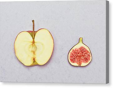 Apple And Fig Canvas Print by Tom Gowanlock