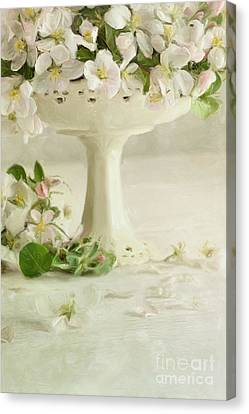 Apple Blossom Flowers In Vase On Table/digital Painting  Canvas Print by Sandra Cunningham