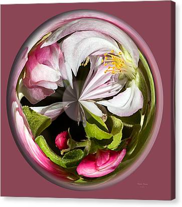 Apple Blossom Globe Canvas Print