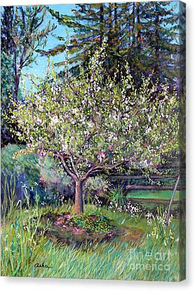 Apple Blossoms And Spring Flowers Canvas Print by Asha Carolyn Young