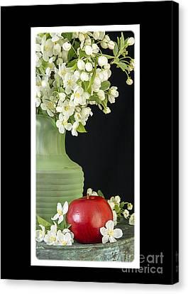 Apple Blossoms Card Canvas Print