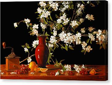 Apple Blossum Time Canvas Print by Rick Fitzsimons