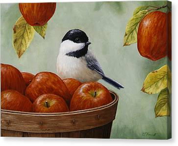 Bird Song Canvas Print - Apple Chickadee Greeting Card 1 by Crista Forest