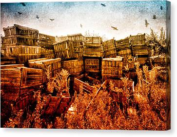 Apple Crates And Crows Canvas Print by Bob Orsillo