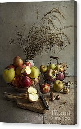 Ceramic Bowl Canvas Print - Apple Fest by Elena Nosyreva