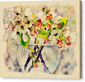 Apple Flowers In Glass Jar Canvas Print by Yury Malkov