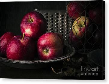 Apple Harvest Canvas Print by Edward Fielding