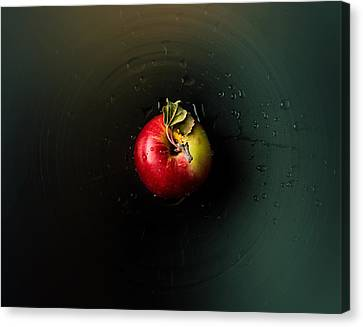 Container Canvas Print - Apple by Ivan Vukelic