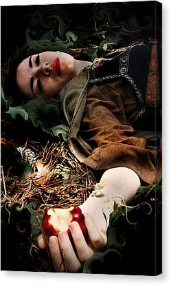 Apple Of Death Canvas Print by Cherie Haines