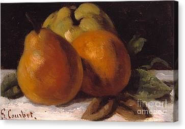 Apple Pear And Orange Canvas Print by Gustave Courbet