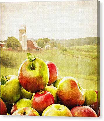Picking Canvas Print - Apple Picking Time by Edward Fielding