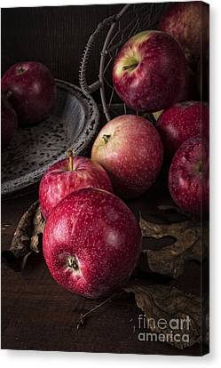 Healthy-lifestyle Canvas Print - Apple Still Life by Edward Fielding