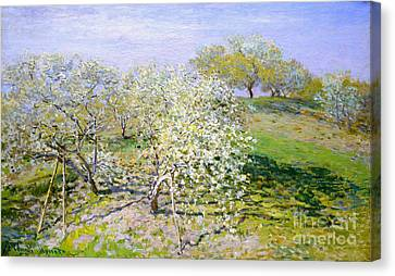 Apple Trees In Bloom 1873 Canvas Print by Claude Monet