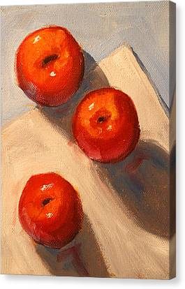 Apple Trio Still Life Canvas Print by Nancy Merkle