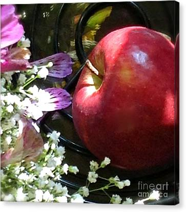 Appleflowers Canvas Print by Susan Townsend