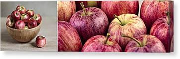 Apples 02 Canvas Print by Nailia Schwarz