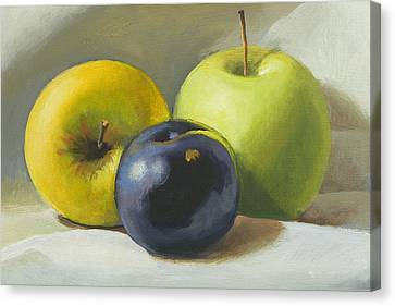 Apples And Plum Canvas Print by Peter Orrock
