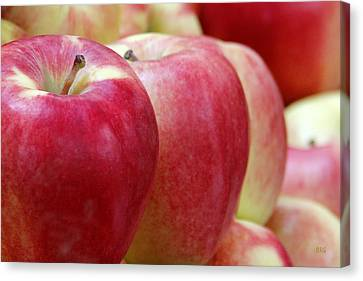 Apples For Sale Canvas Print by Ben and Raisa Gertsberg