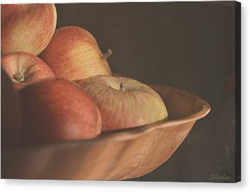 Apples In The Sun Canvas Print