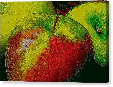 Apples Canvas Print by Kevin Cable