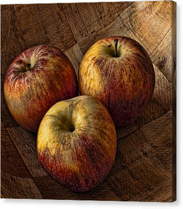 Apples Canvas Print by Steve Purnell
